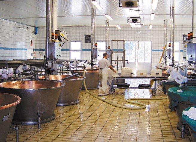 Laiteries et fromageries industrielles